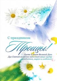 Открытка «С праздником Троицы!». Голубь и ромашки (двойная в конверте)