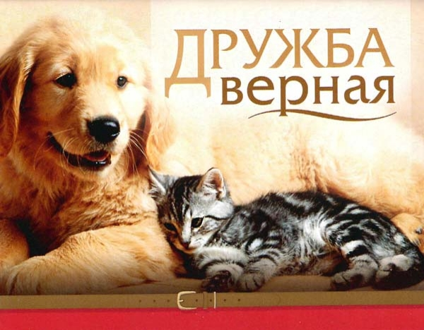 Дружба